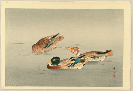 無款: Three Ducks - Artelino