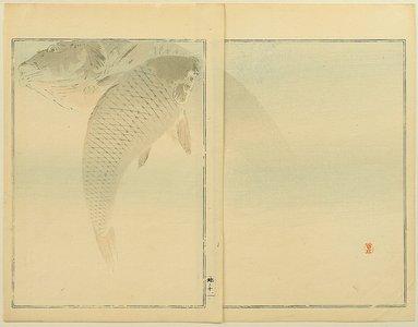 Watanabe Seitei: Carp - Artelino