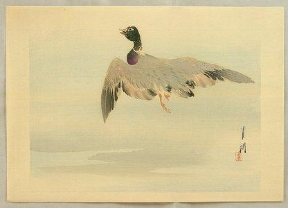 Ogata Gekko: Gekko's Twelve Bird-and-Flower - Flying Mallard - Artelino