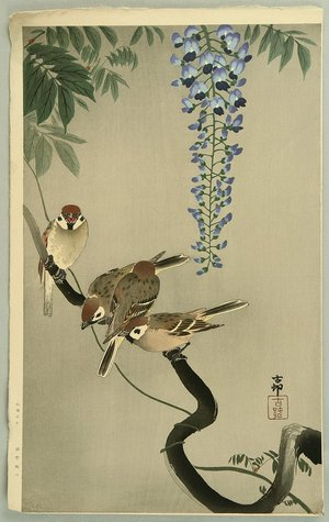 小原古邨: Sparrows and Wisteria - Artelino