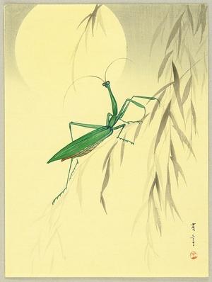 Watanabe Seitei: Praying Mantis and the Moon - Artelino