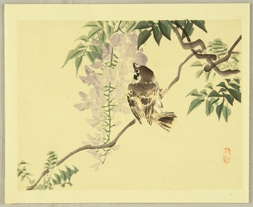 幸野楳嶺: Sparrow and Wisteria - Artelino