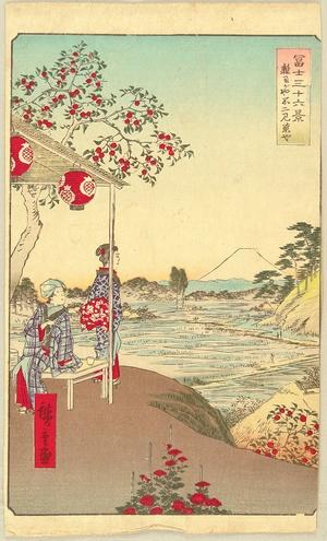 Utagawa Hiroshige: Thirty-six Views of Mt.Fuji - Zoshigaya - Artelino