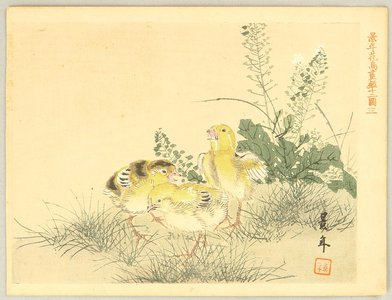 Imao Keinen: Keinen Kacho Gakan Juni Zu - Three Chicks - Artelino