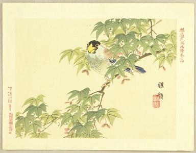 幸野楳嶺: Flowers and Birds Picture Album by Bairei No.4. - Artelino
