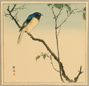静湖: Bird on Branch - Artelino