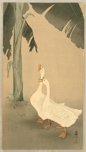 小原古邨: Geese and Banana Tree - Artelino