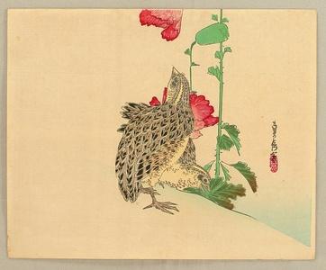 Hasegawa Sadanobu III: Quails - Artelino