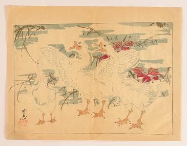 Kawanabe Kyosai: Ducks - Kyosai Rakuga - Artelino
