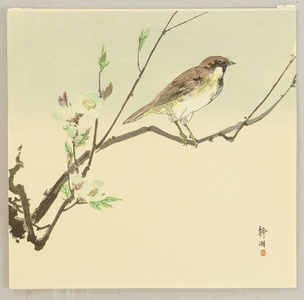 無款: Bird and Plum - Artelino