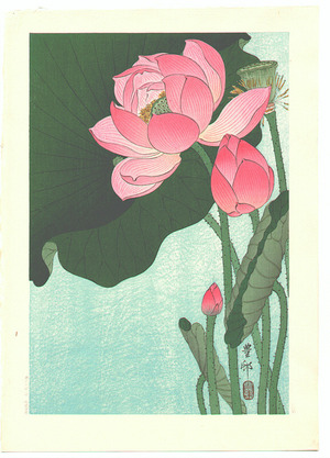 小原古邨: Flowering Lotus - Artelino