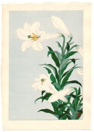 Ohara Koson: White Lily - Artelino