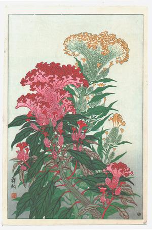 Ohara Koson: Flowering Coxcomb - Artelino