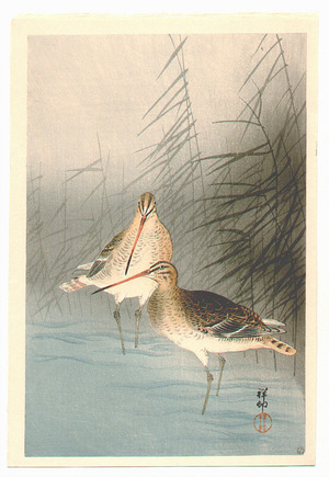 小原古邨: Snipes and Reeds - Artelino