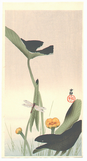 Ohara Koson: Lotus and Dragonfly - Artelino