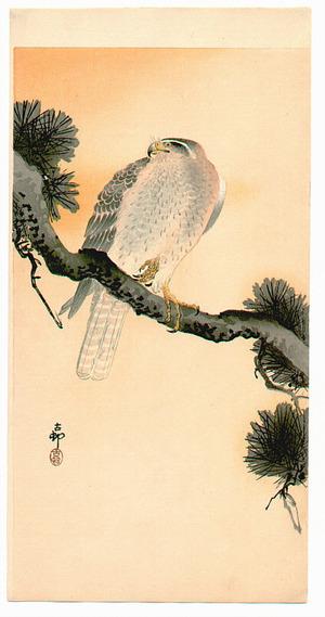Ohara Koson: Hawk - Artelino