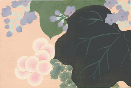 Kamisaka Sekka: Flowers and Leaves - Momoyo Gusa - Artelino