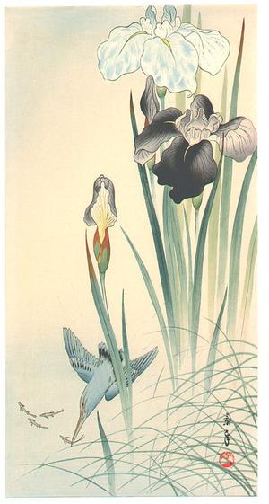 今尾景年: Kingfisher and Irises - Artelino