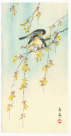 今尾景年: Two Birds on Yellow Blossom Branches - Artelino