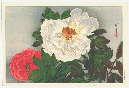 Oda Kazuma: Peonies (Muller Collection) - Artelino