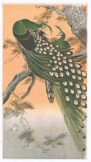 Ohara Koson: Peafowls (Muller Collection) - Artelino