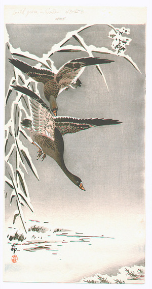Ohara Koson: Geese in the Snow (Muller Collection) - Artelino