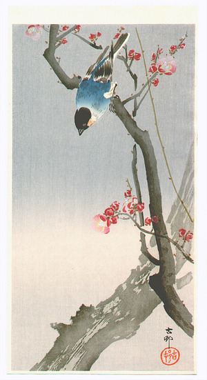 小原古邨: Bullfinch on Plum Tree (Muller Collection) - Artelino