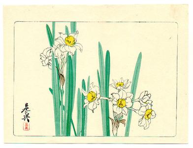 柴田是眞: White Daffodils - Hana Kurabe - Artelino