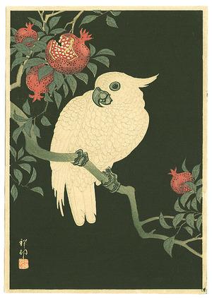 Ohara Koson: Cocatoo on Pomegranate (Muller Collection) - Artelino
