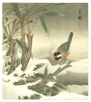 無款: Bunting and Bamboo (Muller Collection) - Artelino