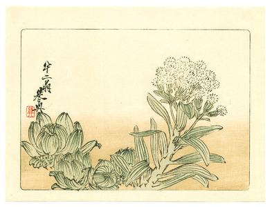 柴田是眞: Flowering Plant - Hana Kurabe (First Edition) - Artelino