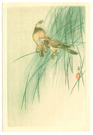 小原古邨: Two Birds (small print) (Muller Collection) - Artelino