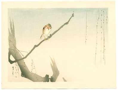 Watanabe Seitei: Small Bird on Willow Tree (Muller Collection) - Artelino