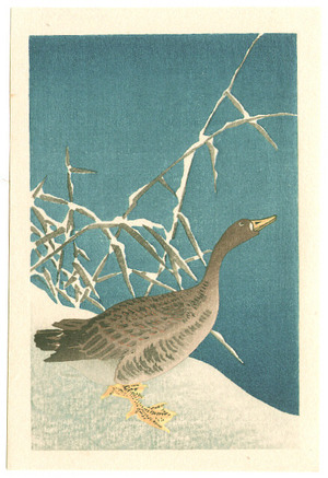 Unknown: Goose with Yellow Feet (small print: Muller Collection) - Artelino