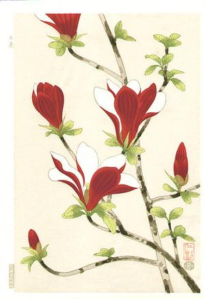 Ito Nisaburo: Magnolia - Artelino