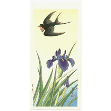 Jo: Black Bird and Iris - Artelino