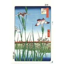 Utagawa Hiroshige: Iris Garden at Horikiri - Meisho Edo Hyakkei - Artelino