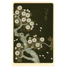 Ogata Korin: Cherry - Rimpa School Series - Artelino
