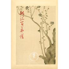 Ogata Korin: Plum Blossoms - Rimpa School Series - Artelino