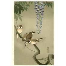 小原古邨: Sparrows and Wisteria (extra-large) - Artelino