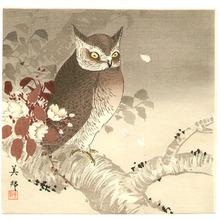 Takahashi Biho: Owl and Cherry Blossoms - Artelino
