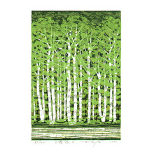 北岡文雄: White Birch Grove - B (limited edition) - Artelino