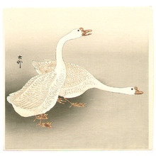 小原古邨: Two Ducks - Artelino