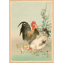Ito Sozan: Chicken Family - Artelino