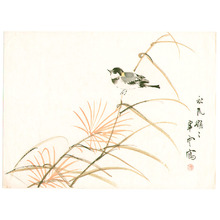 Komuro Suiun: Bird on Autumn Weed - Artelino