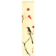 Watanabe Seitei: Wagtail and Maple - Artelino