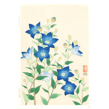 Ito Nisaburo: Blue Baloonflower - Artelino