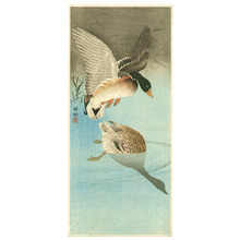 小原古邨: Two Mallard Ducks in a Pond - Artelino
