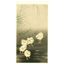 Ohara Koson: Chicks and Worm - Artelino