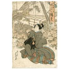 芦幸: Kabuki - Artelino